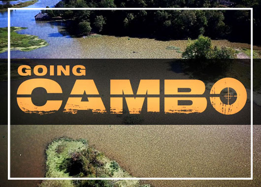 Going Cambo